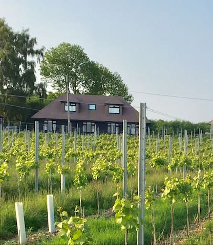 Double bedroom on a Vinyard in kent - Wateringbury - Hus