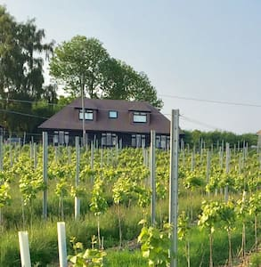 Double bedroom on a Vinyard in kent - Wateringbury - Huis