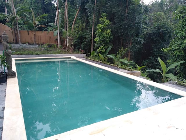 1bed room/ swimming pool river view-in ubud