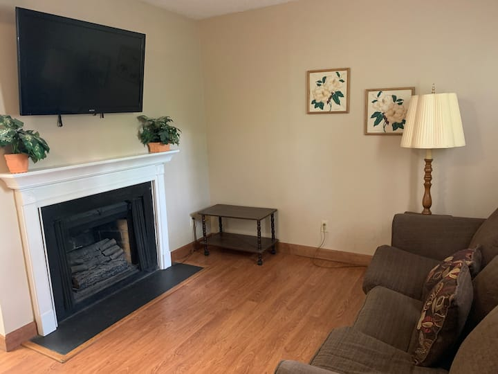 One Bedroom Condo in the Heart of Gatlinburg (OS 315)