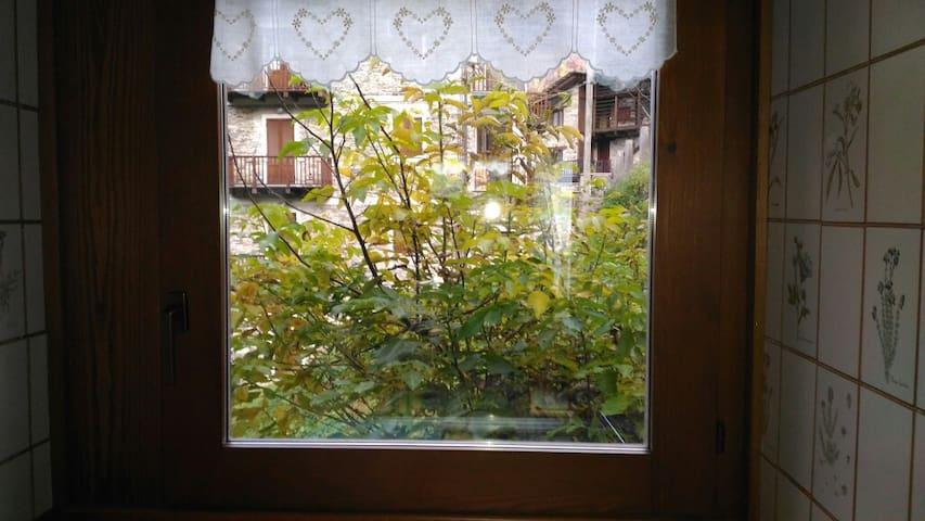 Nutshell stanza  baita Valsesia - Riva Valdobbia - Rumah