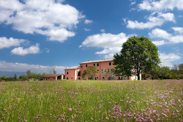 Tenuta San Giovanni, Verbena flat , Toscana !