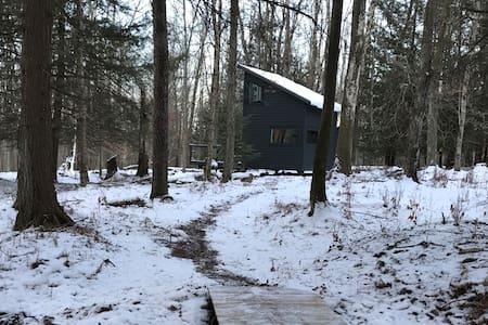Black Swan Lake House on 12 acres Catskill Modern - Swan Lake - Kulübe