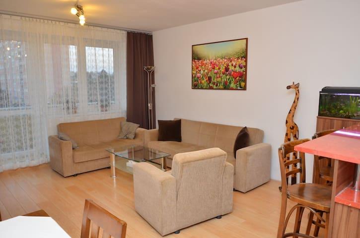 Beautiful clean, sunny apartment
