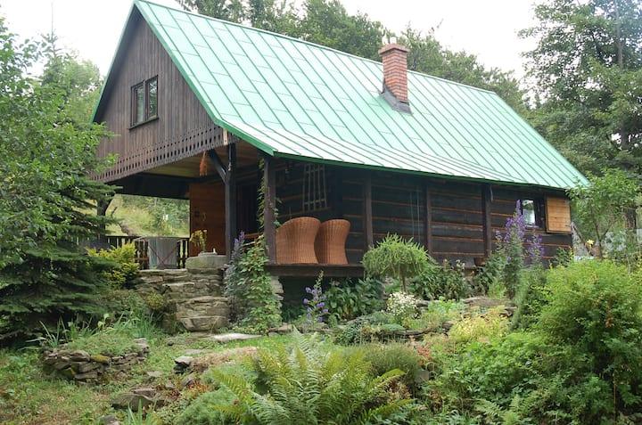Na groniu w Bystrej . Drewniana chata trapera.