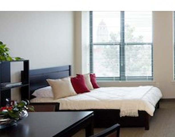Private bedroom with en-suite bath in spacious apt - Stanford - Apartment