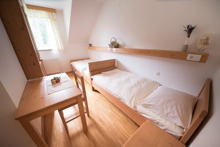 Twin room on the Tourist farm Pr'Dovar