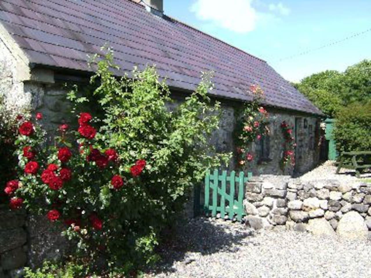 BriarRose Cottage