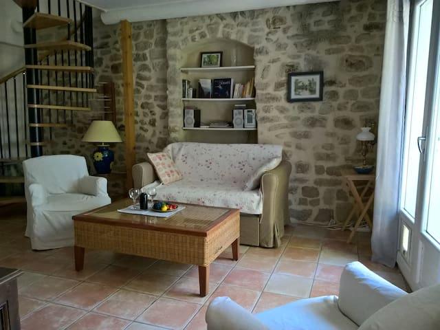 Maison, terrasse et Mont Ventoux