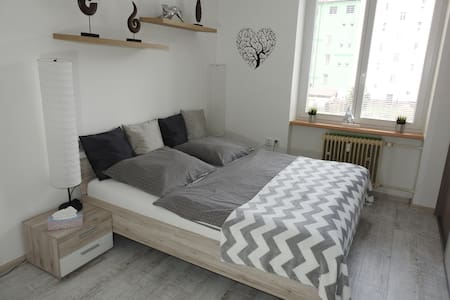 APARTMENT FOR 4 PAX IN DĚČÍN CENTER