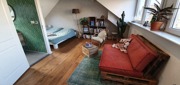 Loft with private bathroom in centre Adam West