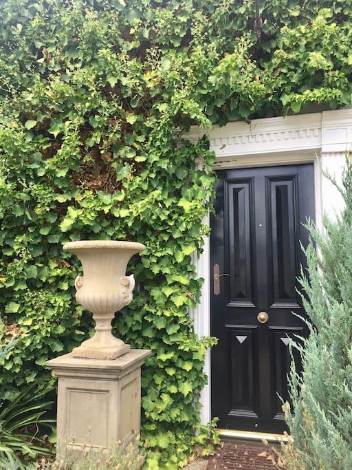Ivy draped entrance