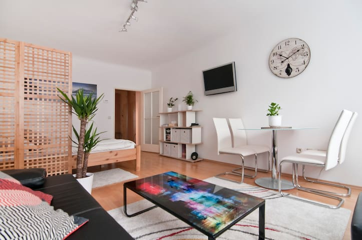 City Center Opera Apartment