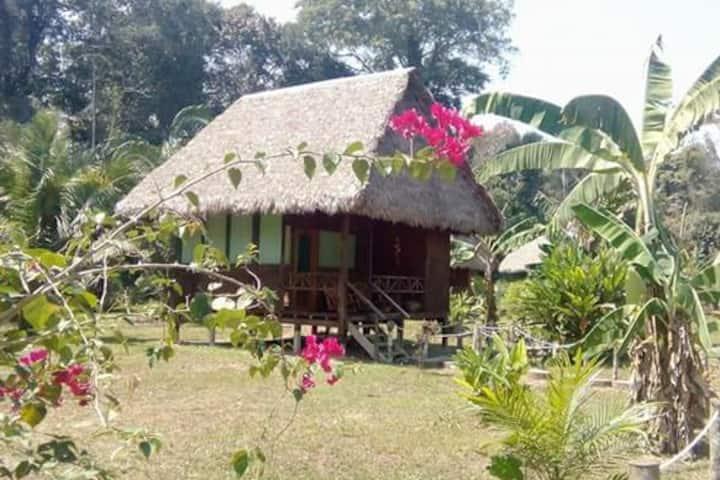 Amazon Garden Lodge: Tambopata, Puerto Maldonado