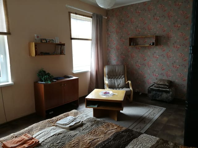 Homelike, sweet apartment near Center
