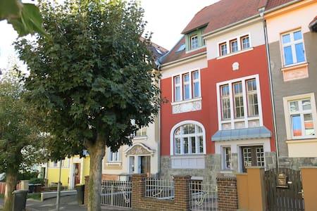 Luxury apartment Hortensia Teplice near spa - Teplice - 附属单元(In-law)