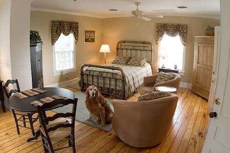 Efficiency Suite in 1856 Manor House - Gordonsville - Apartemen