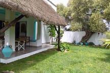 Jardin y ducha exterior