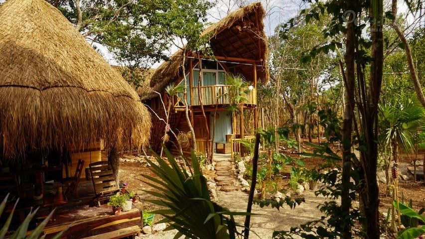 Cabaña Nativa Plata Alta