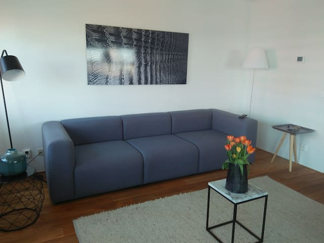 Nice Modern apartment close to Markethall
