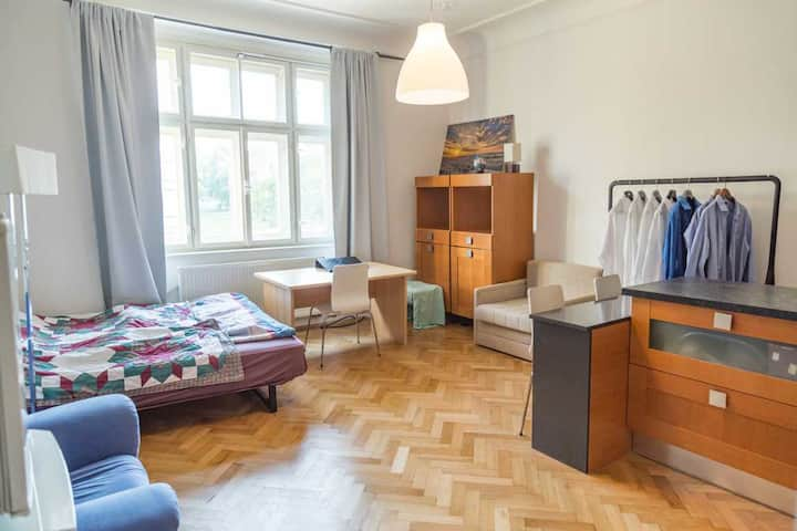 Sunny large apartment close to Prague castle