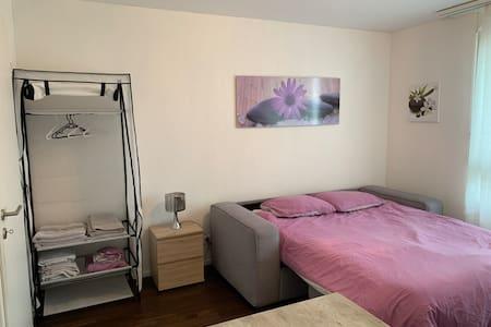 Chambre spacieuse et lumineuse à Belfaux.
