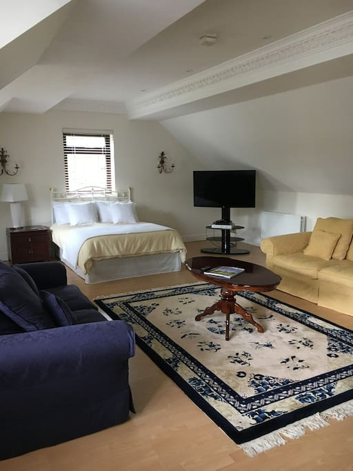 Large apartment, quiet, bright and sunny. Lovely comfortable bed with nice cotton linen. 50 inch smart TV.  Large lounge to relax.
