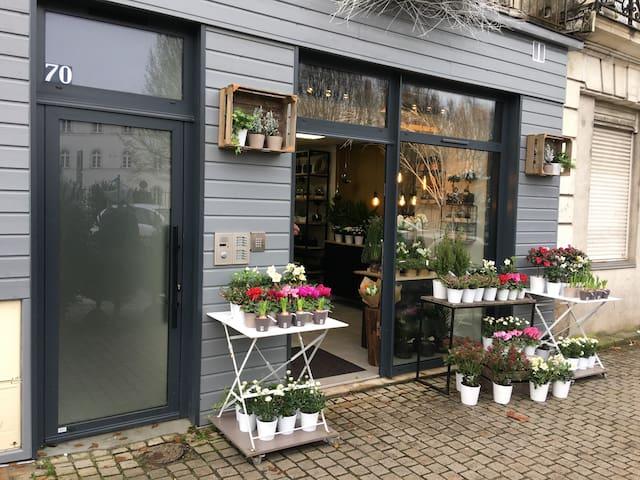 Studio 2 avec son jardinet