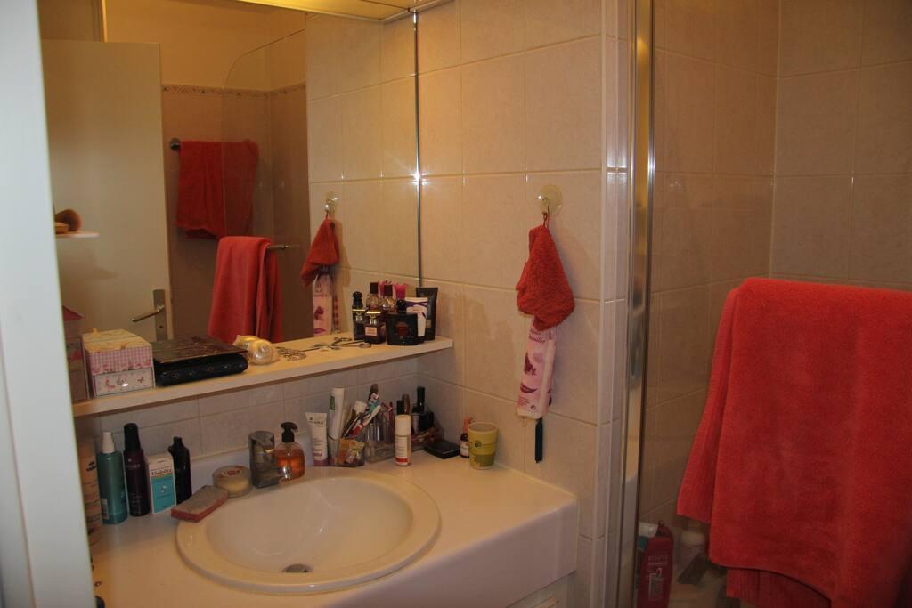 Salle de bain grand miroir