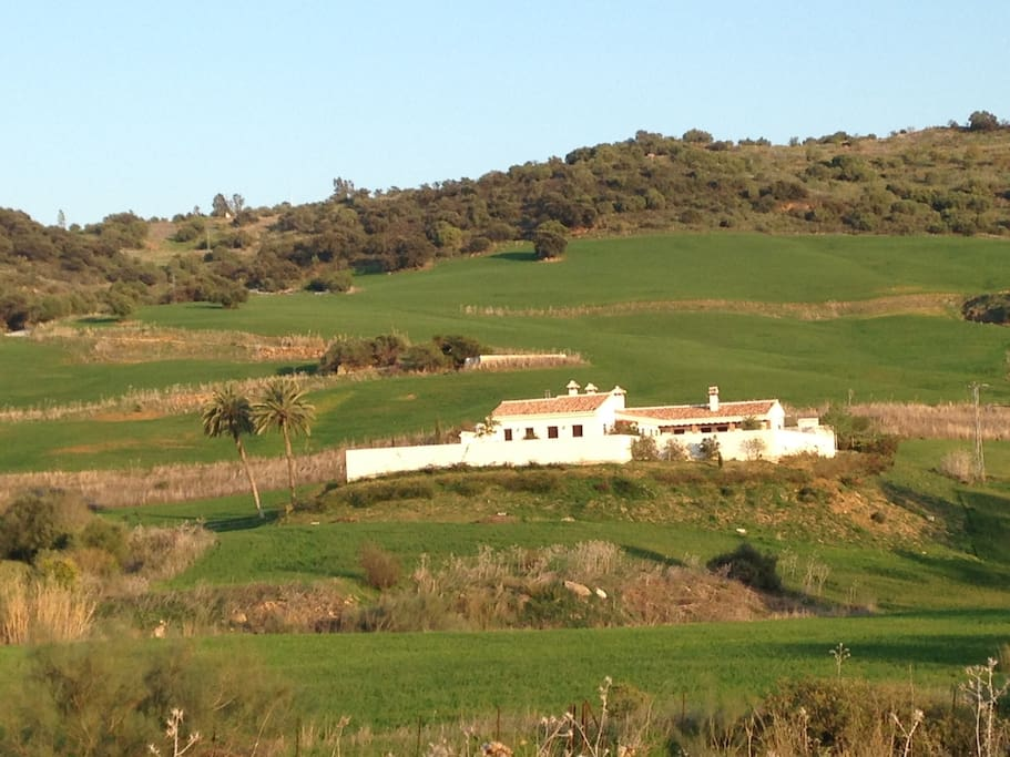 Cortijo Cantares - west view