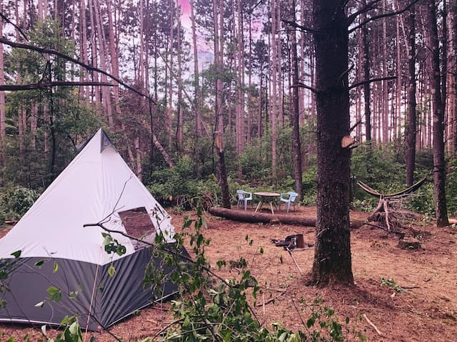 Fairy Forest Camping minutes from Wisconsin Dells