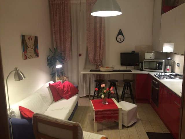 Double room in apartment in Florence - Florence - Appartement