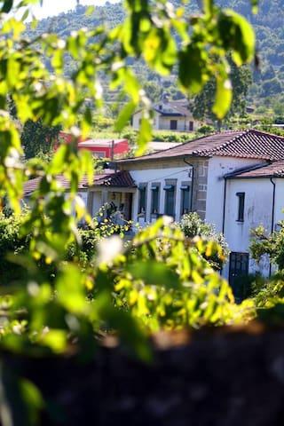 Casa da Trapa - Gourmet Inn - Crasto
