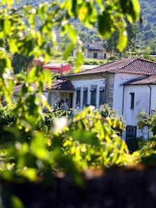 Casa da Trapa - Gourmet Inn - Crasto - Hus