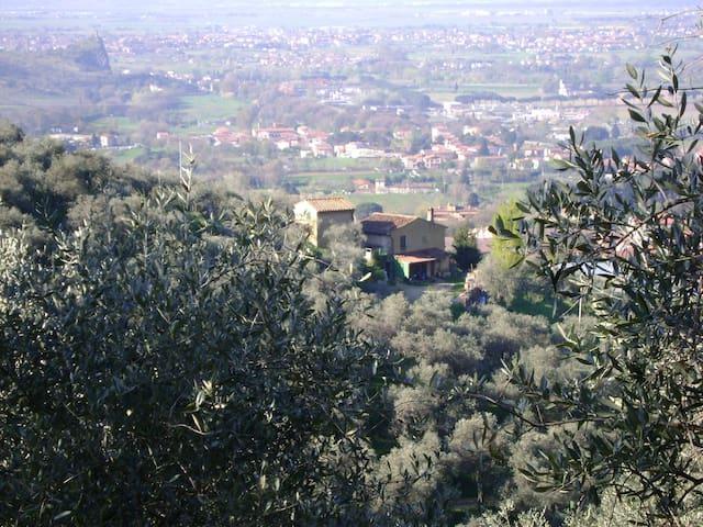 Cottage in fattoria per 4 persone a Calci, Toscana