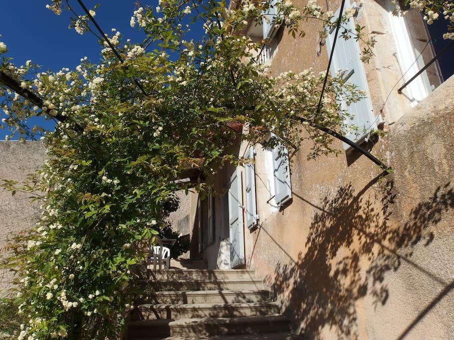 montée d'escalier vers la terrasse du haut