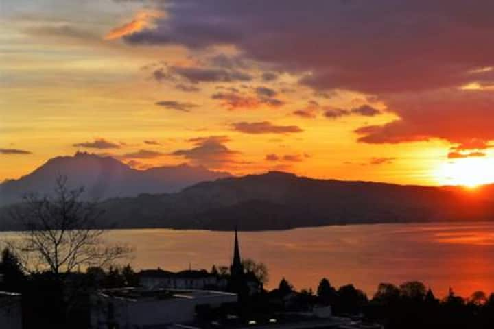 1-bed-room with free view to Pilatus, Zug , lake.