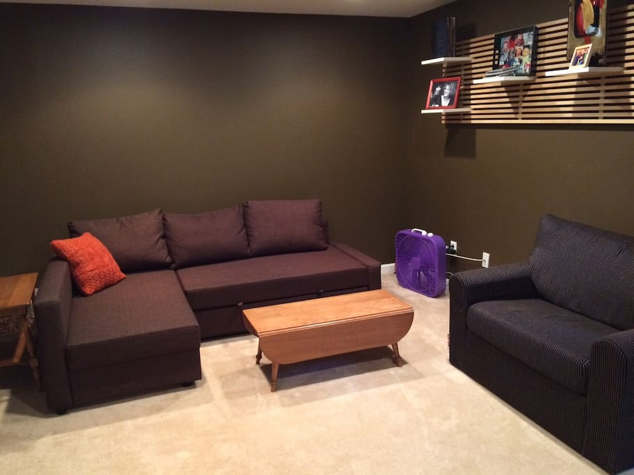 Finished Basement, pull-out couch.