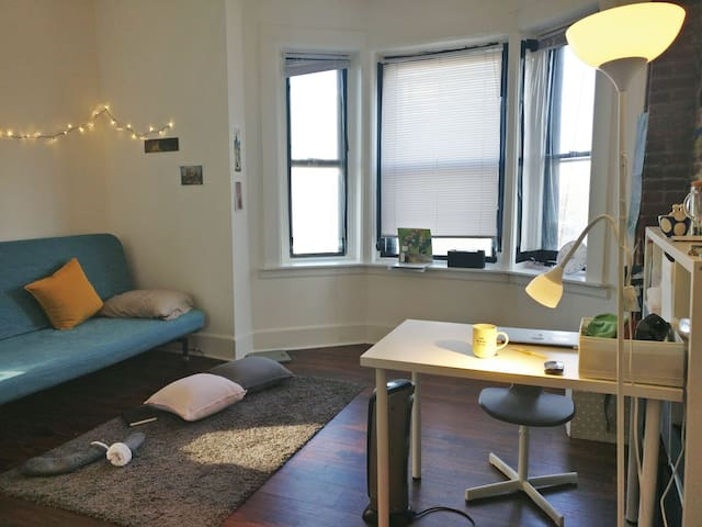 Cozy and bright 3 BR apartment in university city