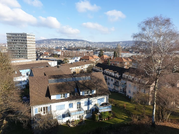 Bright apartment with view over Zurich