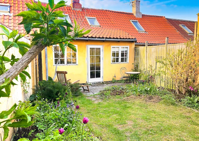 The house has a small south-facing garden that is almost always warm and with no wind.