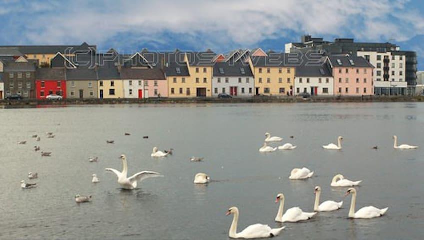 Cuirt Eine Courtyard - Galway - Rumah