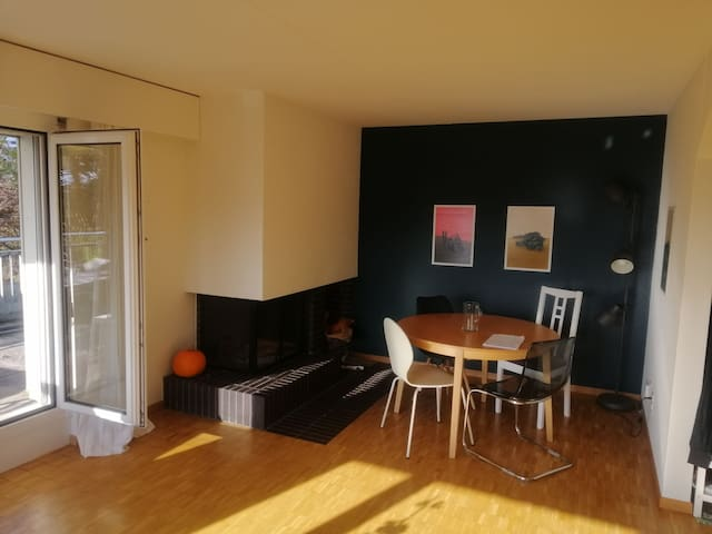 30min from ZH City Center - 2.5 Flat near Bus Stop