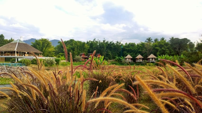 River Pai Thai Teak Villa - Tambon Wiang Nuea - Hus