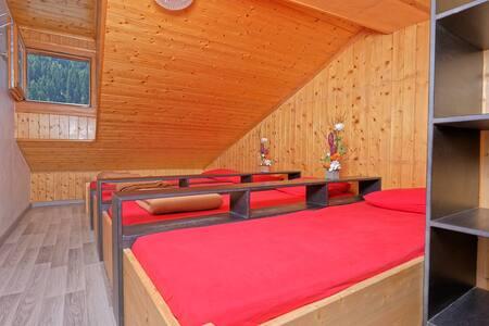 4 Bett Zimmer im Hostel Petit Vélan