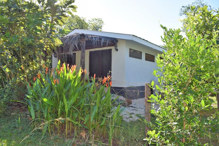 Serenity in Paradise Cabin - Playa Negra