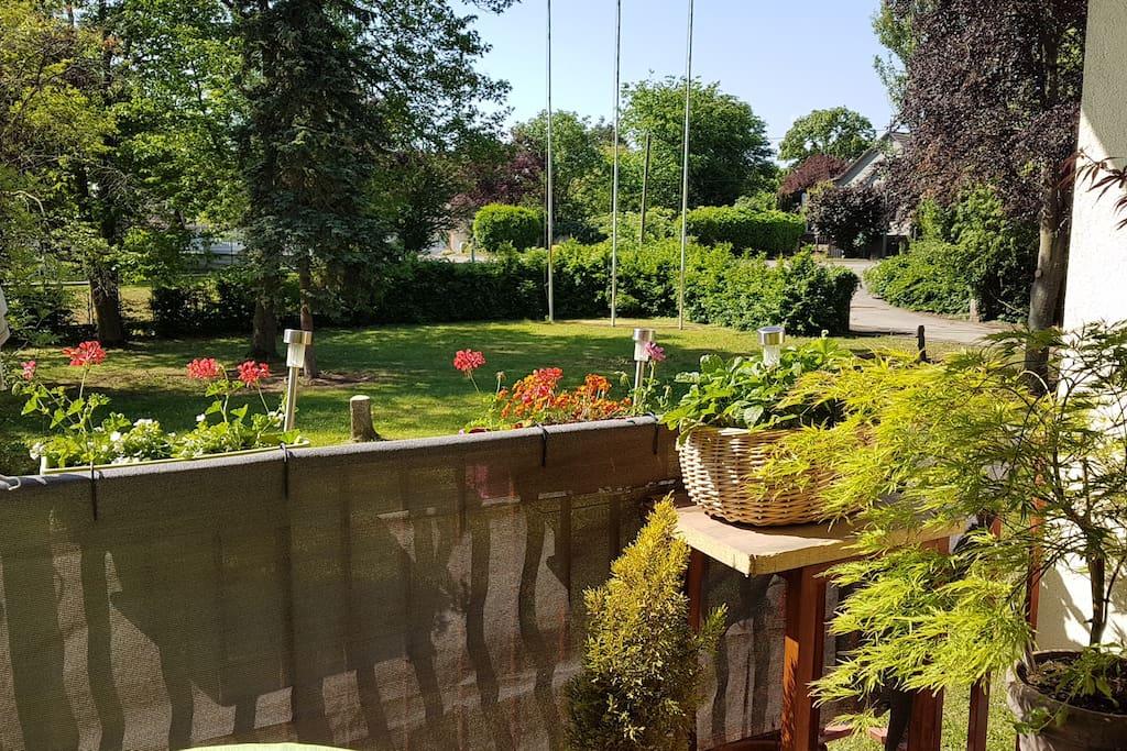 Petit-déj en terrasse avec vue sur le parc