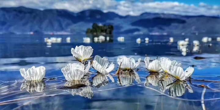 泸沽湖—陌野民宿
