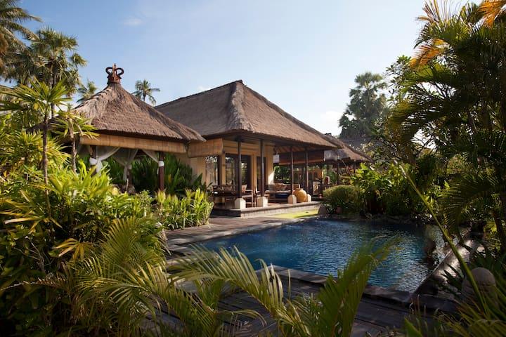 Amertha Bali Villas ( Pool Villas ) - Gerokgak - 別墅