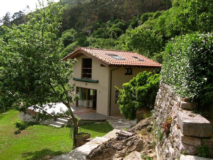 casa independiente con jardín